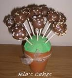 Cake Pops - Chocolate Balls and Sugar Rocks